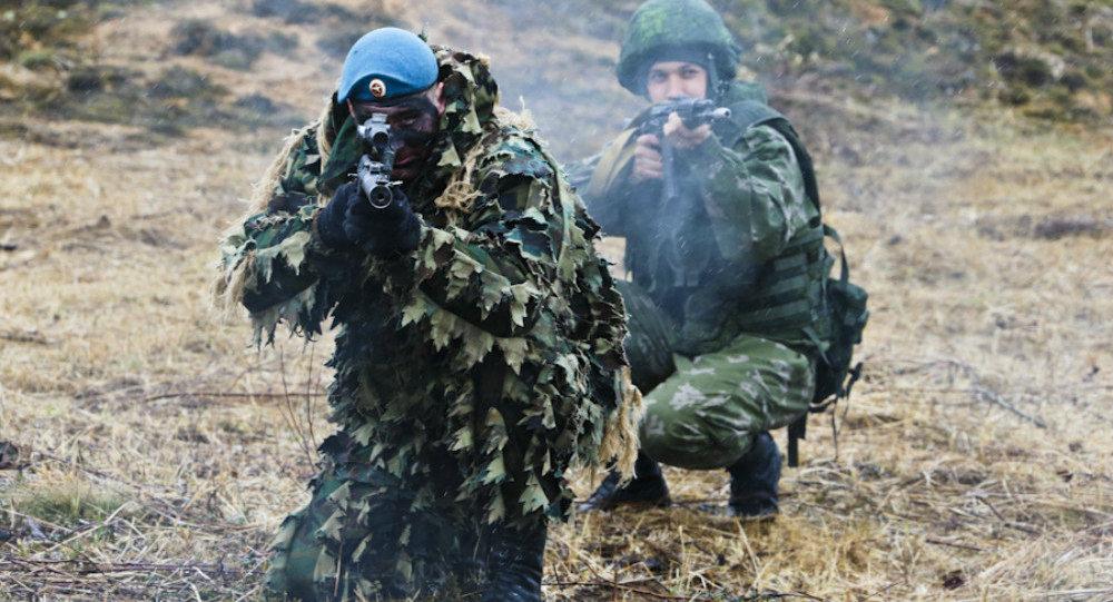 俄媒:俄空降军将大规模改革 成为全球打击军种