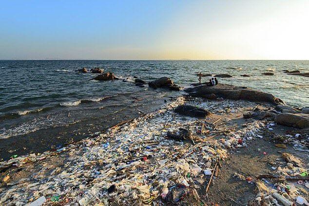 """海洋变成""""下水道"""" 塑料垃圾十年内或增加两倍"""