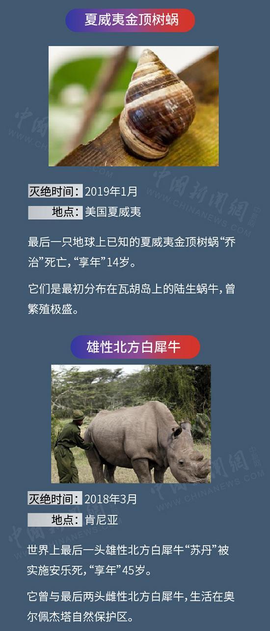 震撼!灭绝动物图鉴,你认识哪些?