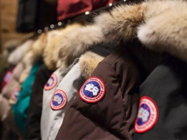 又一用户称在网易考拉买到假加拿大鹅