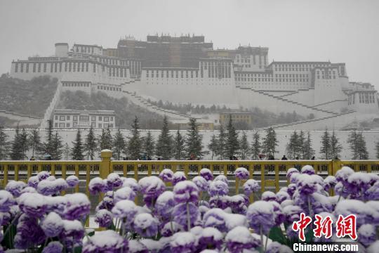西藏发布今年首个暴雪黄色预警信号