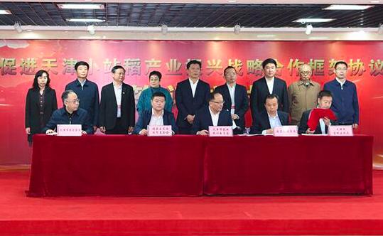 促进天津小站稻产业振兴合作协议在海南签订
