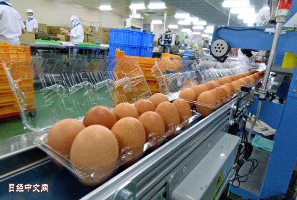 欧盟将解除对日本鸡蛋和乳制品进口限制