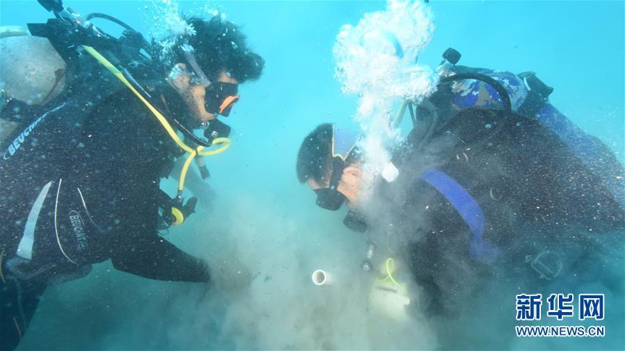 中沙联合考古队在塞林港遗址再获重要发现