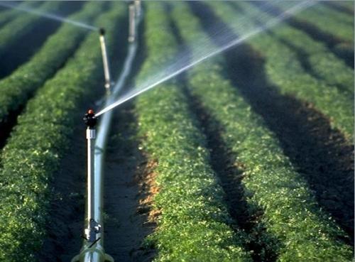 宁夏已发展高效节水灌溉353万亩