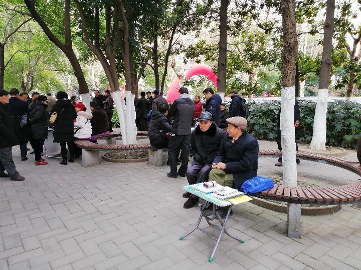 """春节将至 中国城市公园""""相亲角""""人气火爆"""