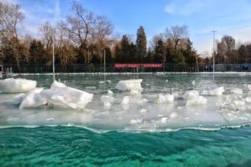 """天啊!清华学生要上""""室外冬泳""""课?网友:因为害怕,我报了北大"""