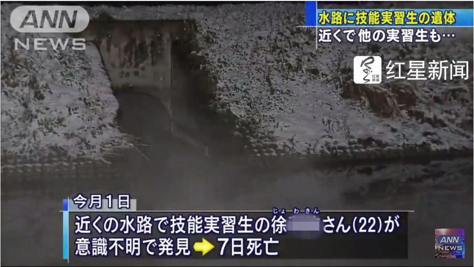 2名中国实习生死于日本同一水渠细节披露:同天都休假没上班