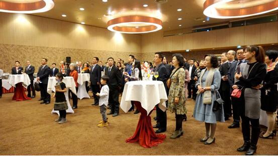 中国驻奥地利使馆举办2019年春节招待会