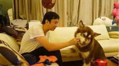 吴彦祖宠物狗照片曝光,然而狗狗的名字却意外引发争议