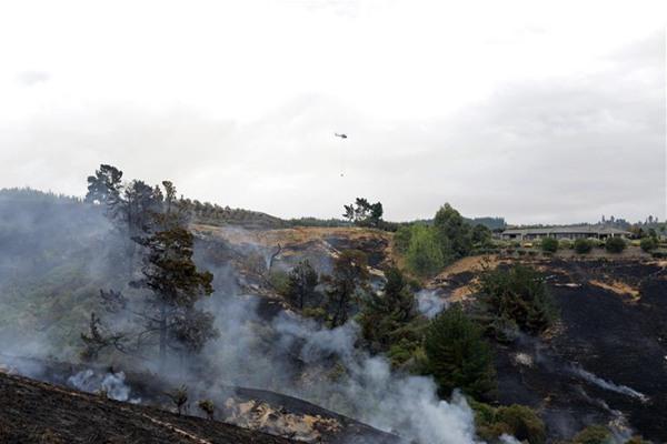 新西兰南岛山火持续 过火面积超过1900公顷