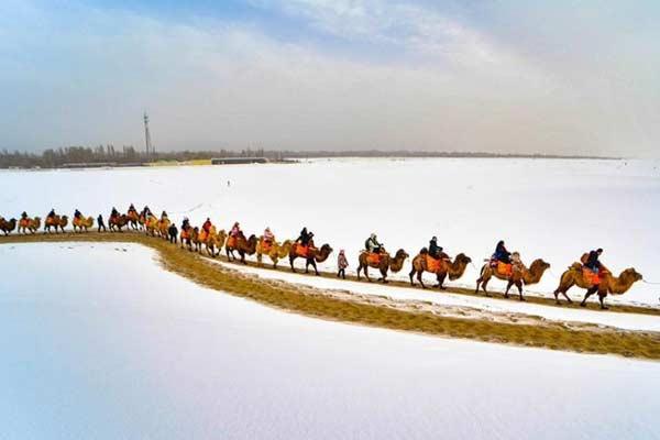 甘肃敦煌新春迎瑞雪 大漠戈壁白雪茫茫