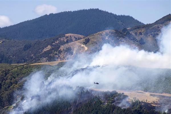 新西兰南岛山火持续 已成为64年来最大山火