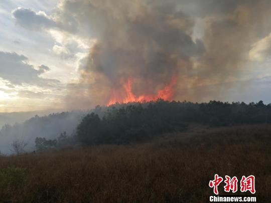 云南大理海东森林火灾得有效控制 部分地段仍存烟点