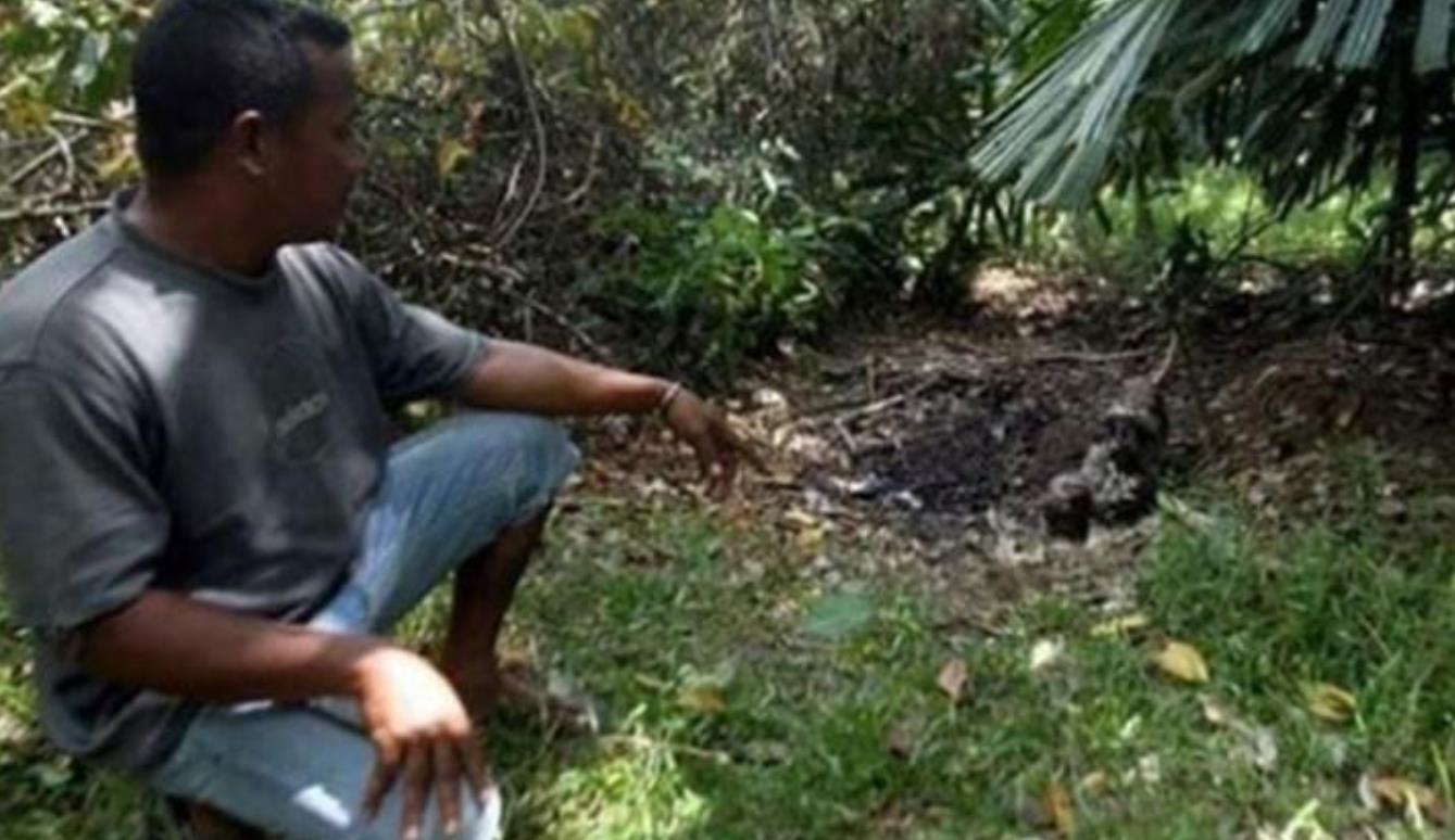 马来西亚发生一起骇人命案:11岁女童遭掳杀