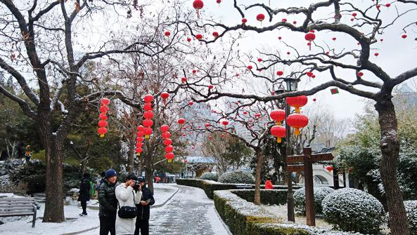 正月初八京城春雪 冰霜松竹诗意开年