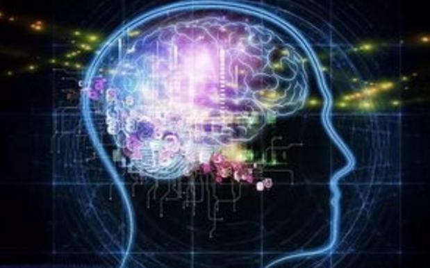 专家:13条改善大脑认知缺陷的科学建议