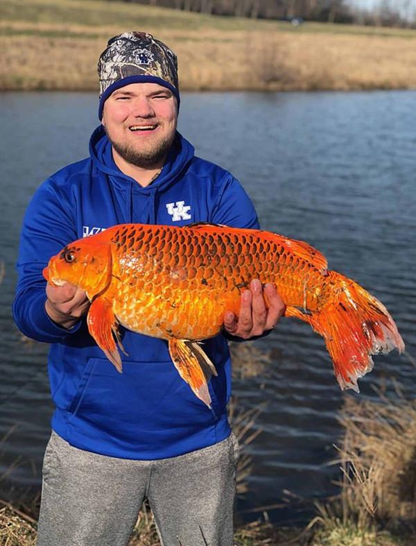 美国渔夫用饼干钓到9公斤大鱼 疑似巨型家养金鱼