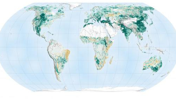 NASA:是中国和印度的行动主导了地球越变越绿