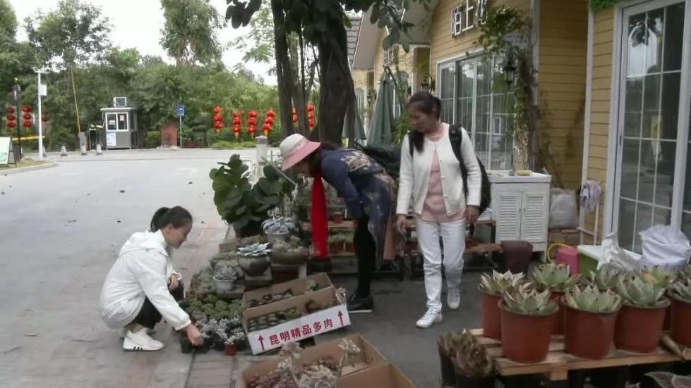 北京赛车pk10八码:过年花店关门,却自动收款33笔!老板娘惊呆了