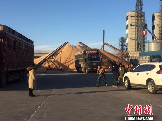黑龙江进行粮食收储制度改革 水稻市场化收购占比达53%