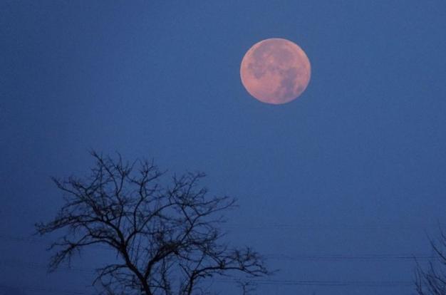 """元宵节将现""""最大满月"""" :上演罕见""""超级月亮"""""""