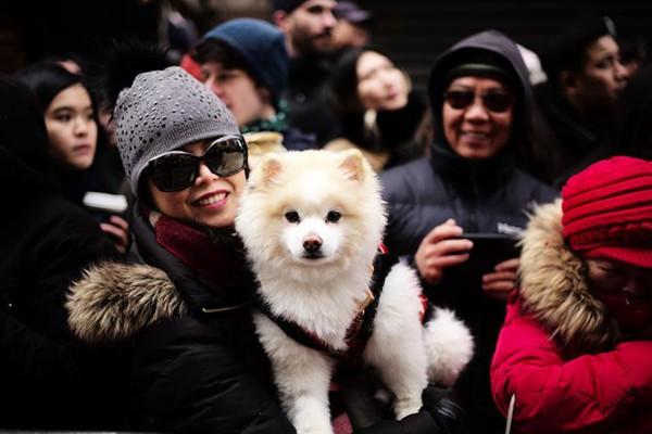 纽约唐人街举办新春大游行