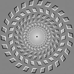 中国科学家解开谜团:复杂光流运动视觉错觉是咋回事