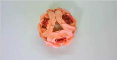 教你制作极简双层小花花球