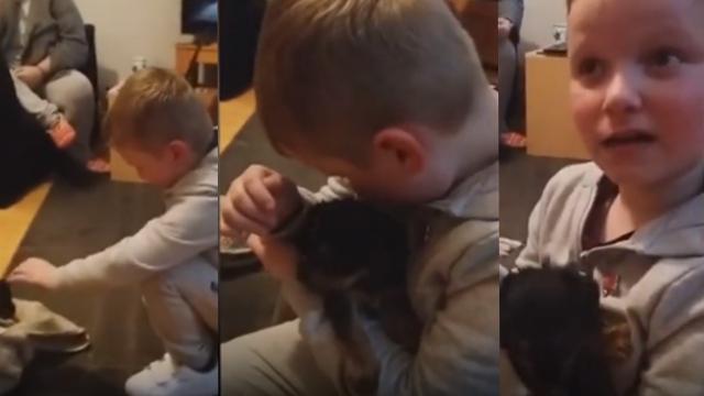 自闭症男孩得到一只小狗后喜极而泣