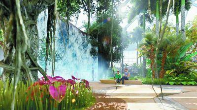 神秘红树林走进北京世园植物馆