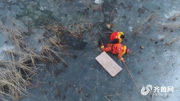 男子为找狗被困湿地孤岛 消防用无人机施救