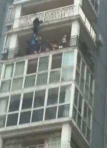 少年命悬12楼阳台 众人翻窗托举救人
