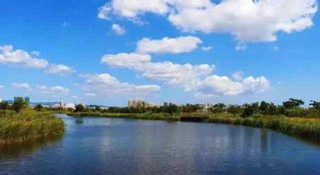水利部发文:采砂管理纳入河湖长制考核体系