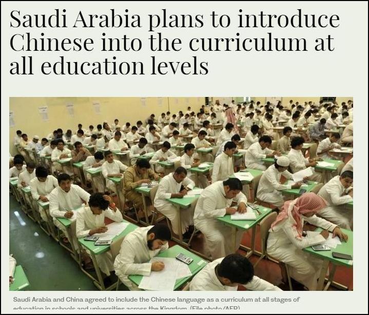 新媒:看好中国 这两国要把汉语列入小学课程
