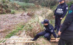 采茶女被困河对岸 民警合力救援