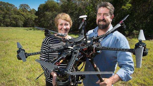 为观察考拉习性 澳研究人员动用了红外无人机