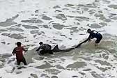 美渔民捕获300斤大白鲨 勇敢将其放生