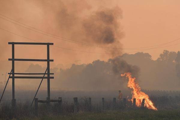 澳大利亚南部遭遇百年来最热3月 多地出现野火
