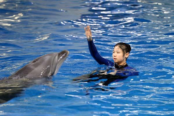 """合肥90后女驯兽师和她的海豚""""搭档"""""""
