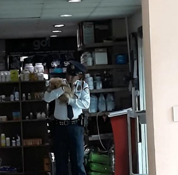菲律宾动物医院一保安怀抱小狗入睡极尽温柔