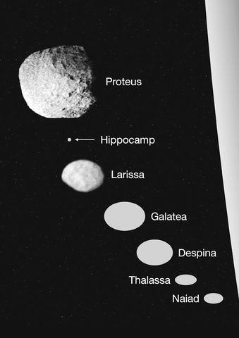 """哈勃望远镜发现海王星新卫星 命名 """"马头鱼尾怪"""""""