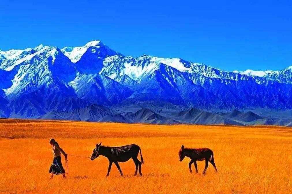 """昆仑山将建国家公园 地处中国西北被誉""""万山之祖"""""""