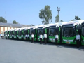 40辆比亚迪电动巴士在印度?#24230;?#36816;营