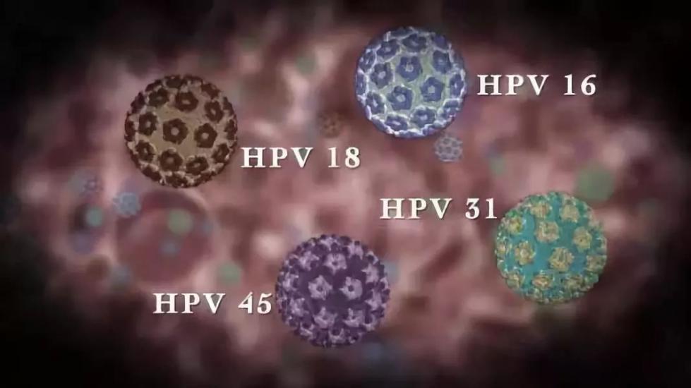 男性也要打宫颈癌疫苗?还能防病?医生权威说法来了…