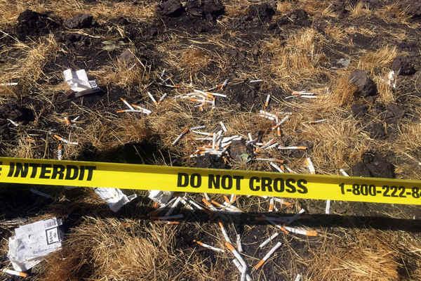埃塞俄比亚航空首次发布坠毁客机现场照片
