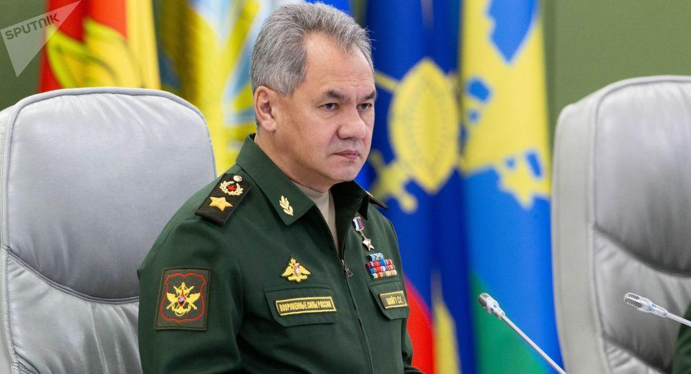 俄防长:2019年俄军将首次列装攻击型无人机