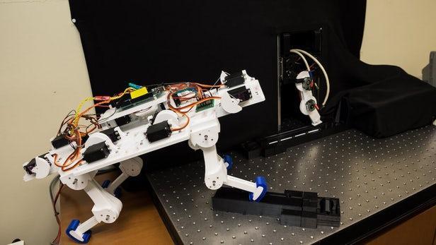 机器腿能像动物进化一样来教自己走路