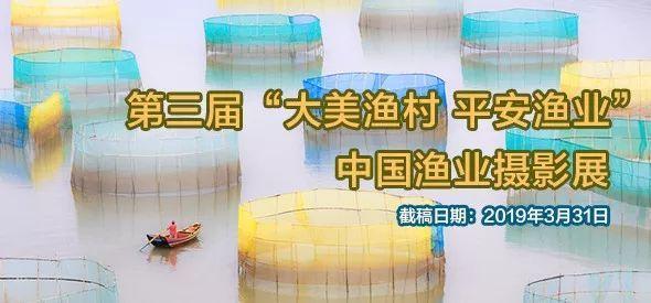 第三届中国渔业摄影展增加邮箱投稿