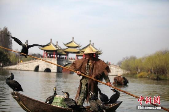 """江苏扬州瘦西湖上演""""鸬鹚捕鱼"""""""